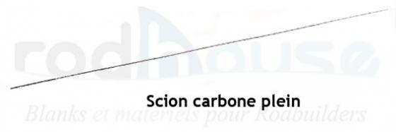 Scion carbone plein